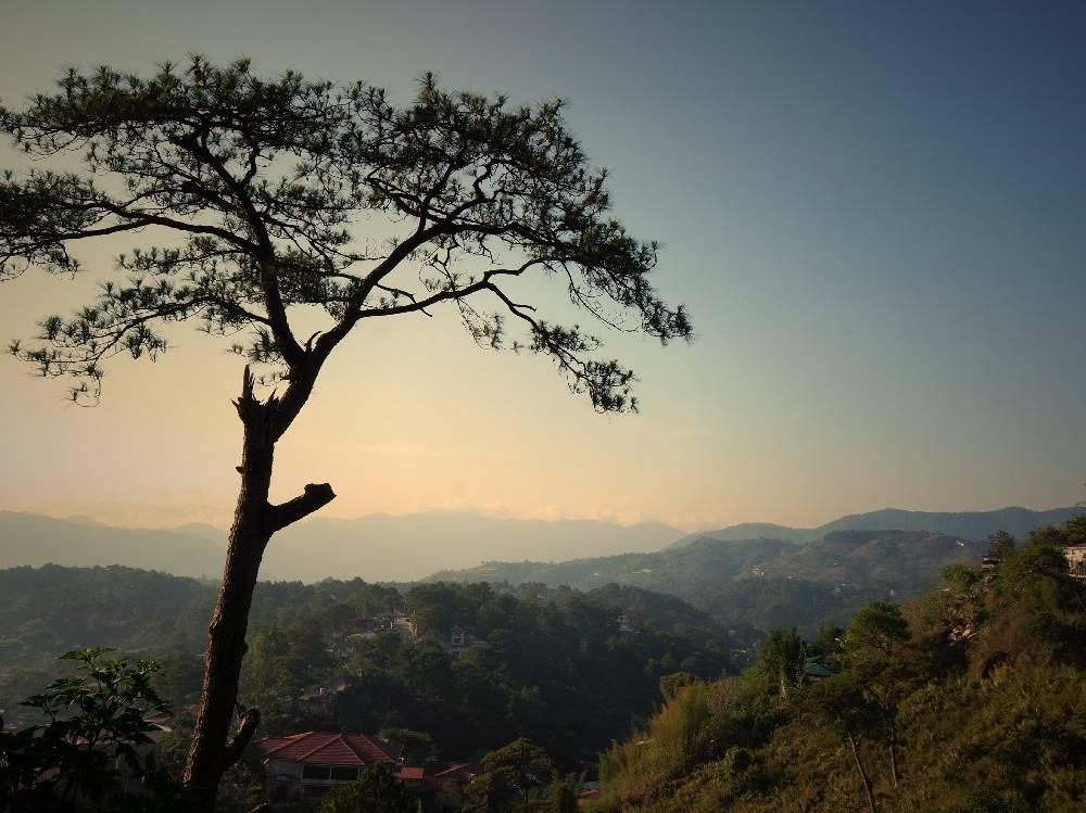 バギオ 山 風景 絶景