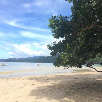 フィリピン、マニラ、インターン、旅行、パラワン